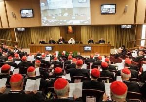 Le collège des cardinaux réunis en consistoire le 12 février 2015