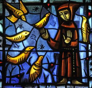 François prêchant aux oiseaux