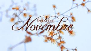 novembre_001